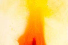 IM HERBSTLICHT.IX-2014-ÖL AUF LEINWAND 120X80cm