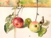 Fruchtige