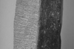 Benson Manguana - Spirit - H 90 cm