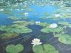 Seerosen-2008-Oel auf Leinwand-120x100cm