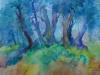 alter-olivenbaum